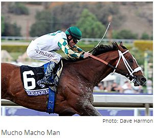 Adena Buys Interest in Mucho Macho Man, By Claire Novak Blood-Horse