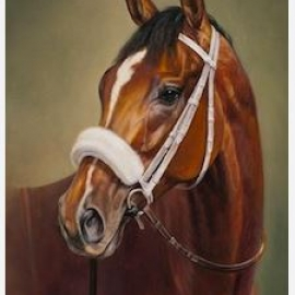 Mucho Macho Man by Jaime Corum