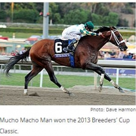 Photo: Dave Harmon Mucho Macho Man won the 2013 Breeders' Cup Classic.