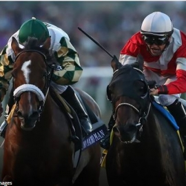 Breeders' Cup Classic 2012: Fort Larned Outduels Mucho Macho Man