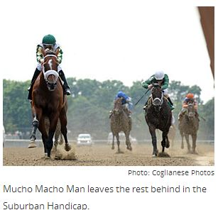 Mucho Macho Man Sizzles in Suburban By Claire Novak, Blood-Horse