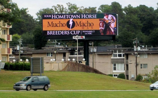 Hometown-Horse-Billboard