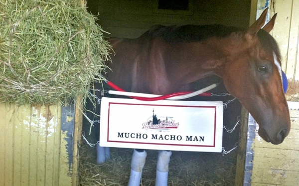 Macho-Belmont-Custom-Apron