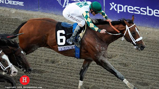 Mucho Macho Man's Breeders' Cup Classic Win Named NTRA Moment of the Year