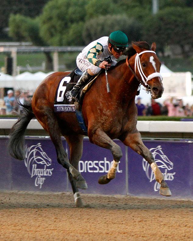 Haskin's Classic Recap: Macho Grande, Blood-horse