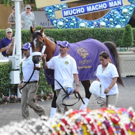 Breeders Cup Blanket on MMM